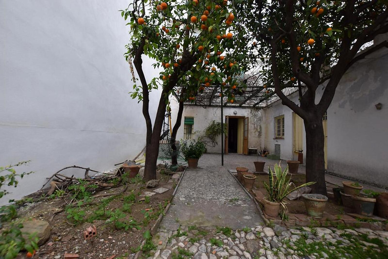 Fuengirola 11