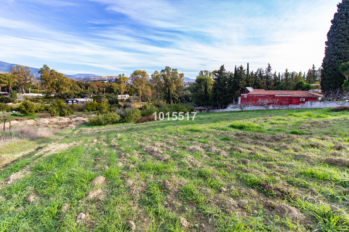 Beautiful South facing  plot of land just behind the village of Cancelada and only 2 minutes' d, Spain
