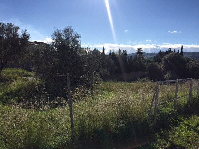 Super flat plot in one of the best streets of the prestigious Mijas Golf urbanisation. The plot is c, Spain