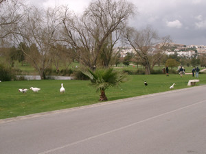 Plot to build a villa with garage, pool and garden, Close to Golf,   Magnificients Views: Golf, Moun,Spain