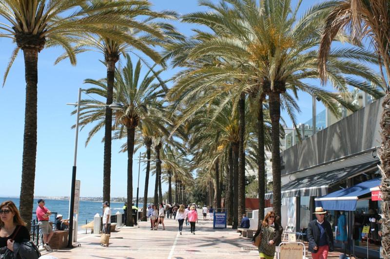 Shop in Marbella for sale