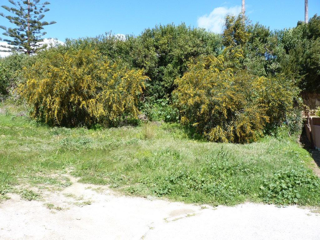 R3142303: Plot for sale in San Luis de Sabinillas