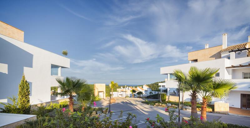 Apartments In Cadiz 5