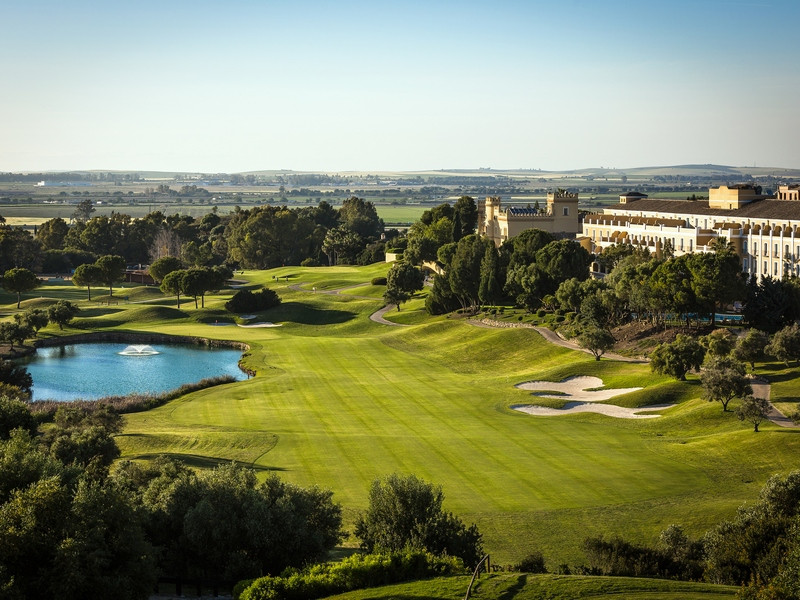 An iconic 5 Star Hotel close to Jerez with bank valuation of €39.000.000 for sale with or without ma,Spain