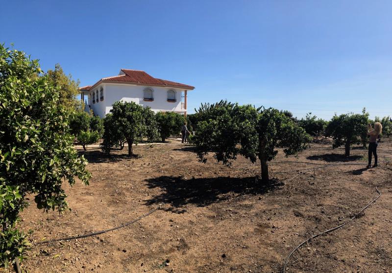 Marbella Banus Finca – Cortijo en venta en Alhaurín de la Torre – R3627953