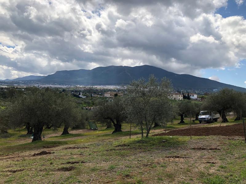 Land in Alhaurín el Grande for sale
