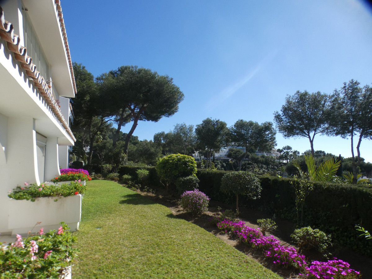 Incredible investment!  Located in the beautiful area of Miraflores, this very spacious studio apart,Spain