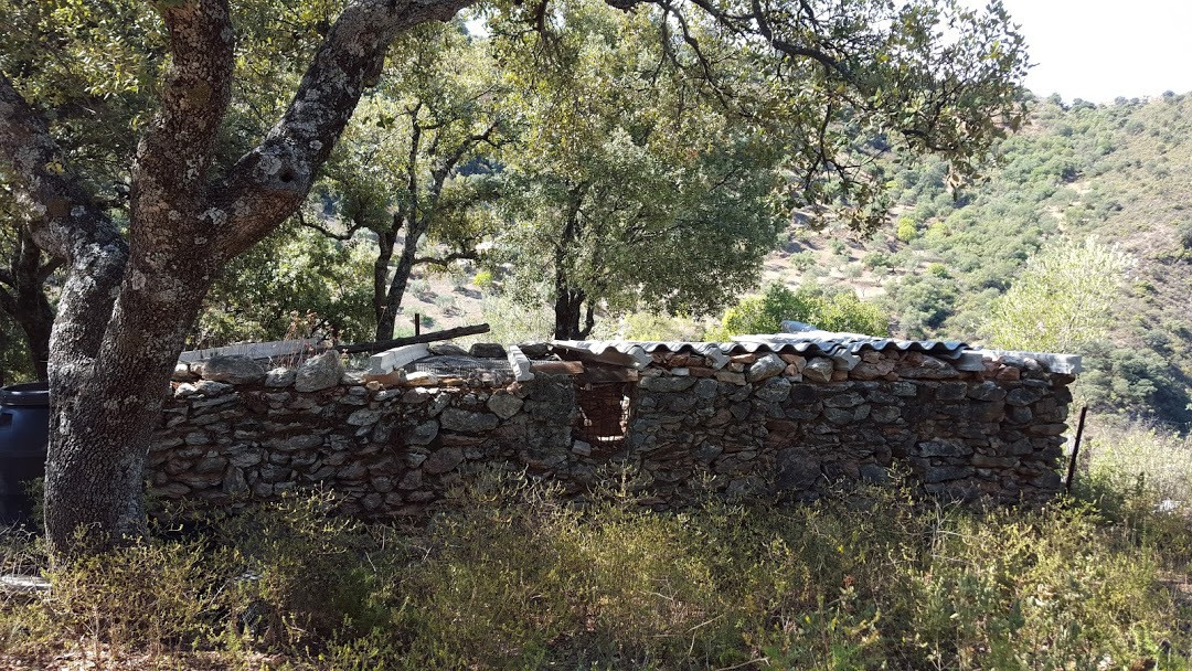 0-bed-Land Plot for Sale in Ronda