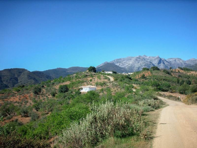 0-bed-Residential Plot for Sale in Tolox