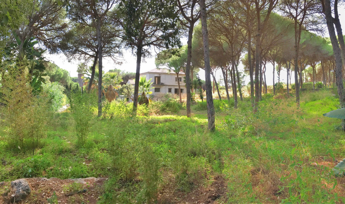 0-bed-Residential Plot for Sale in Las Chapas