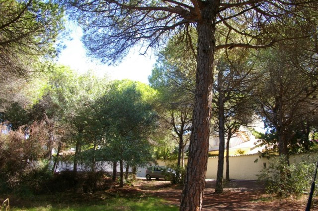 0-bed-Residential Plot for Sale in Marbesa
