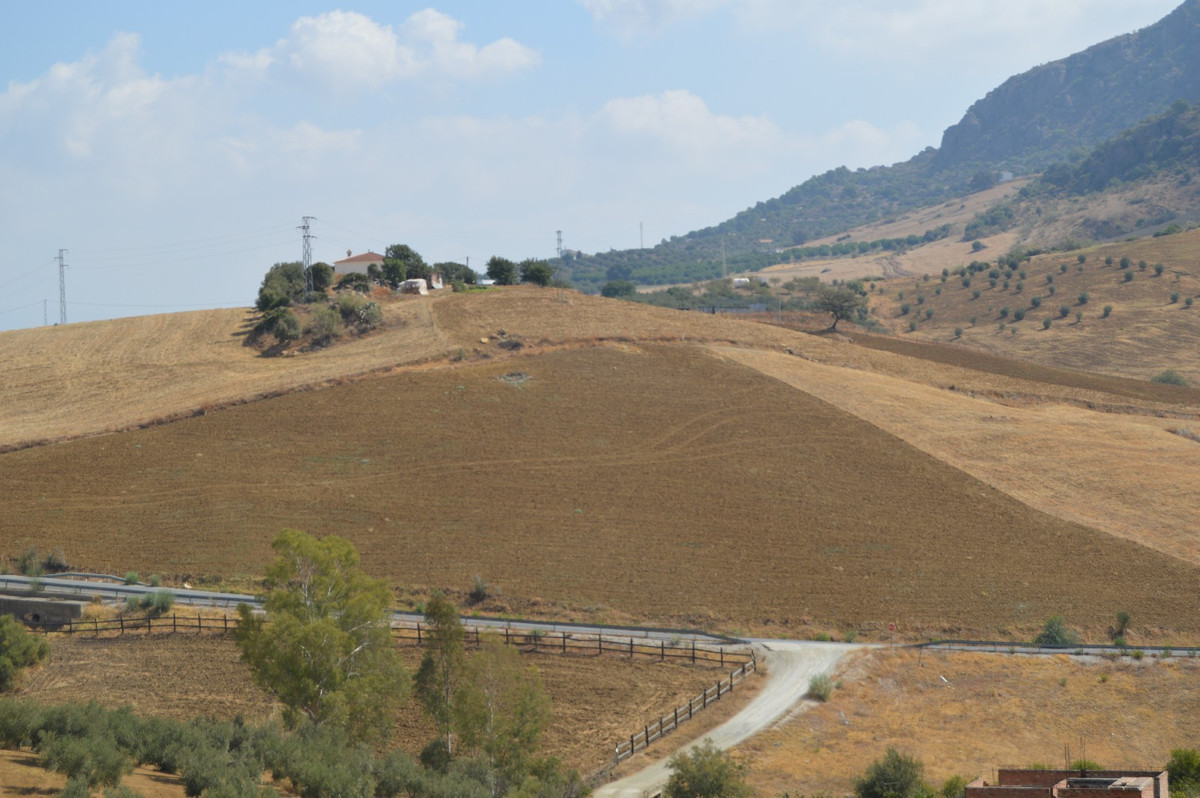 0-bed-Land Plot for Sale in Alora