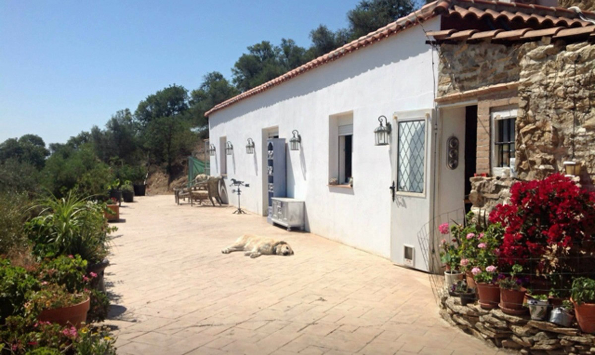 Pretty Little Country Bungalow. Close to the Towns of Gibralgalia and Pizarra. 2 bedrooms and 2 bath,Spain