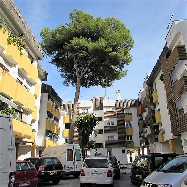 Precious flat reformed to putting on in San Pedro center. Closely together of school, gym, shops ...,Spain