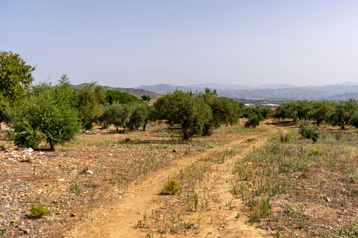 Plot located in Pinos de Alhaurin, very central to all amenities, with many possibilities to build i,Spain