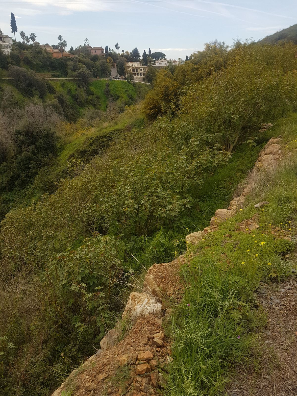 Building site to build a villa located in the top of El Rosario, ten minutes drive from the center o,Spain