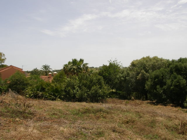 Terreno Urbano en venta, Sotogrande Alto – R3008948
