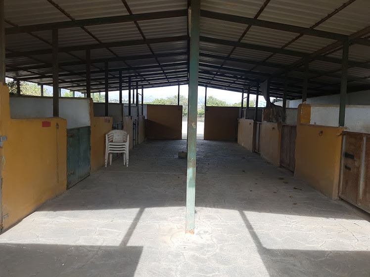 EQUESTRIAN YARD FOR SALE Located ESTACION de CARTAMA There is a 2 bed Wooden house on site.registere,Spain