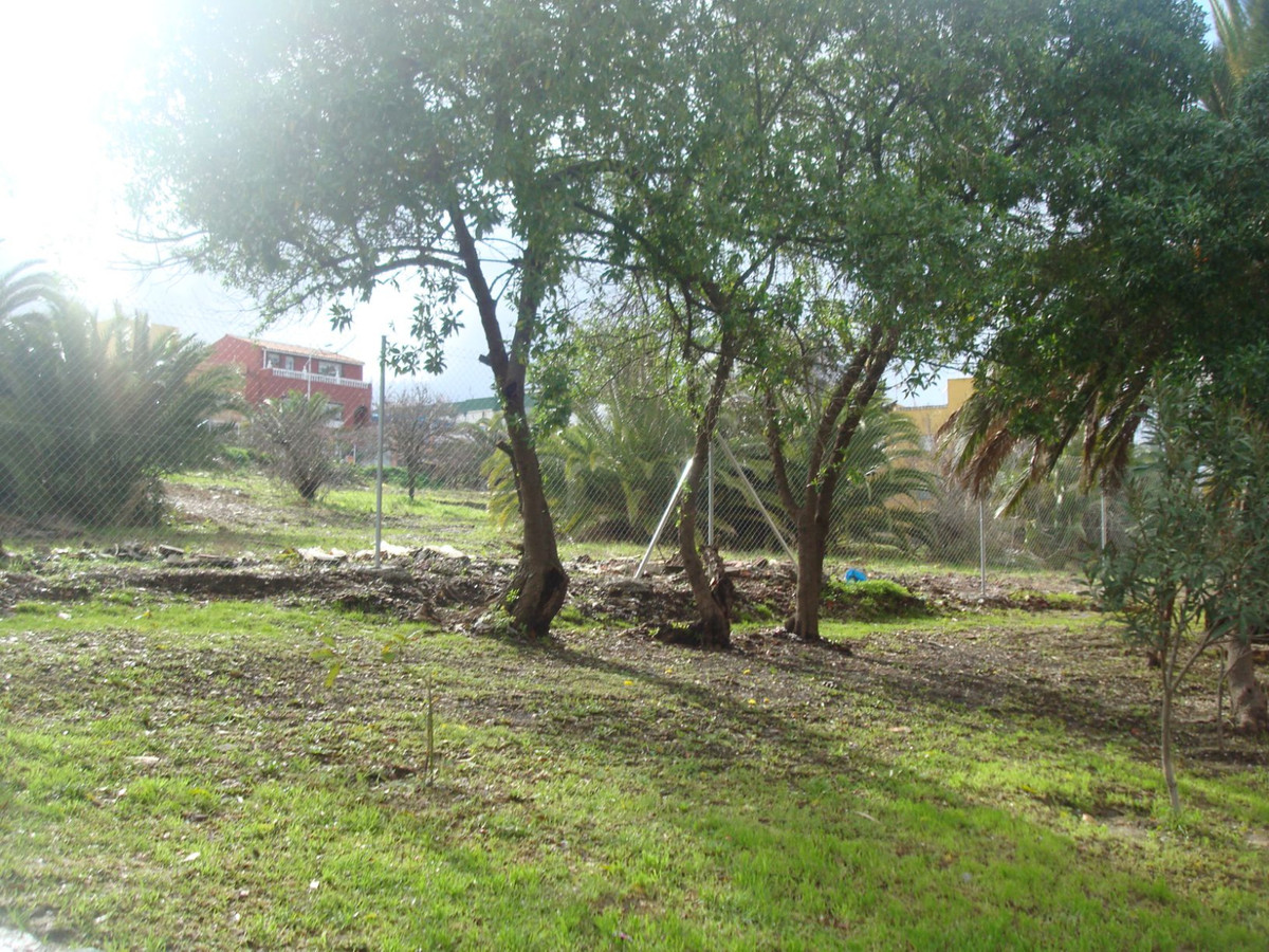 Plot in Algeciras R3343354 1