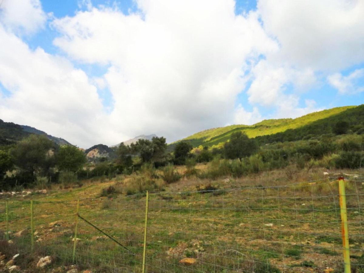 El Gaucin property, with the area of 6.6 hectares, absolutely available for all kinds of projects an,Spain