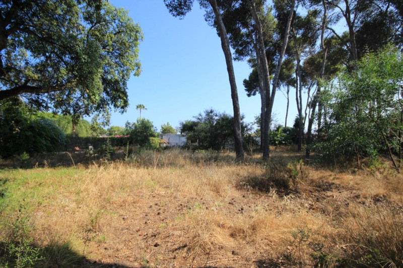 Plot Residential for sale in Benamara, Costa del Sol