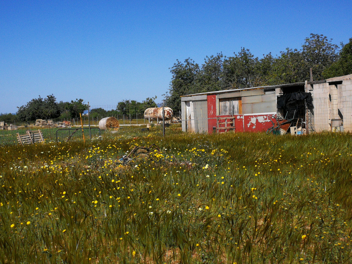 Completely enclosed rectangular solar in Consell with small house of about 12 m2 ideal for horses an,Spain