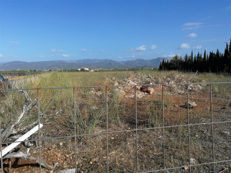 Land in Consell for sale