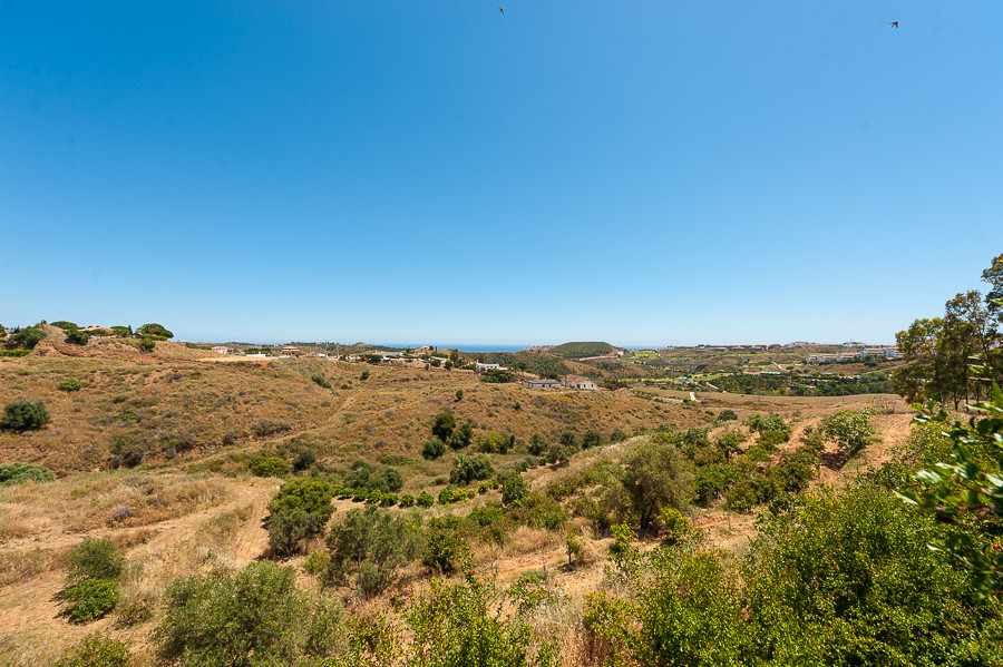 Magnificent rustic plot. Irrigated land and pastures with plantation of olive and fig trees. Fantast, Spain