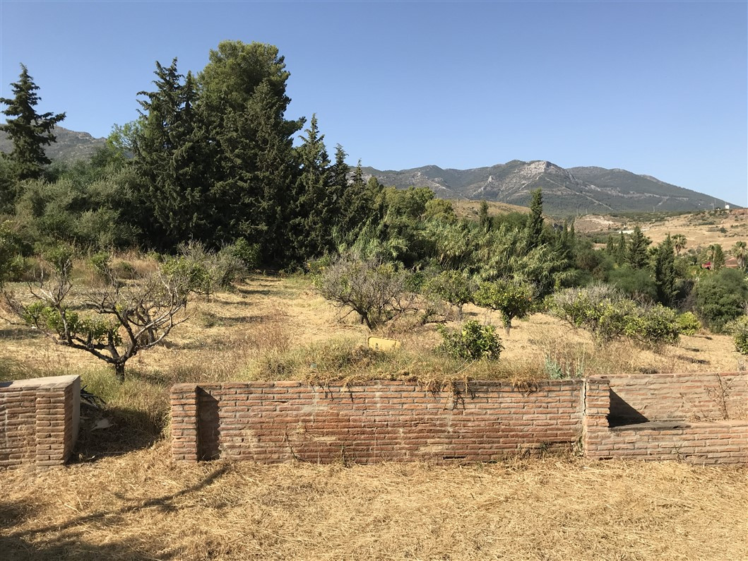 House in Alhaurín de la Torre R3216376 16