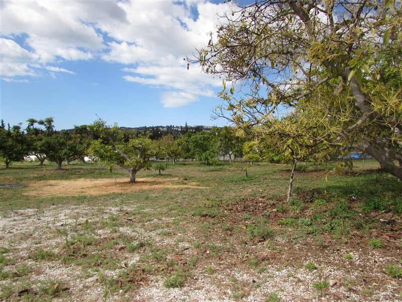 Originally listed for 299,000€ and recently reduced to 225,000€.  Magnificent flat land with 150 fru,Spain