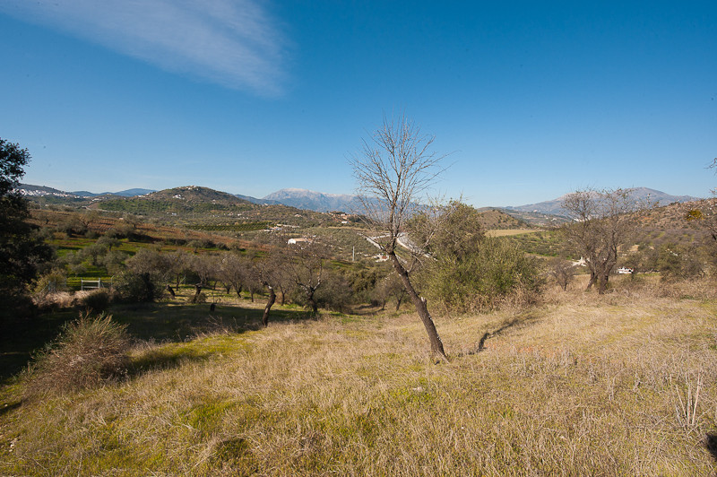 Originally listed at €165,000 and recently reduced to €99.000 for a quick sale.   A superb plot of l,Spain