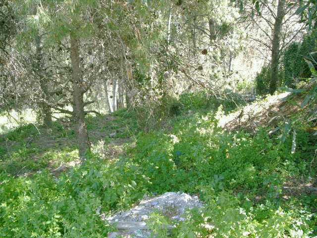 Originally listed for 1.650.000€ and recently reduced to 1.400.000€  This is an attractive plot of l,Spain