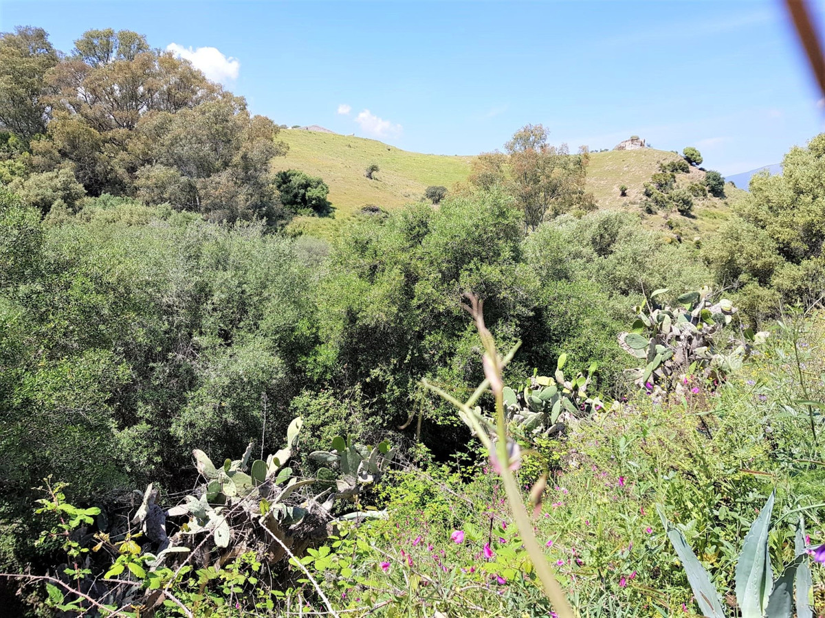Sloping plot located centrally in Cerros del Aguila. The plot has green zone on 2 sides  Less than 1,Spain