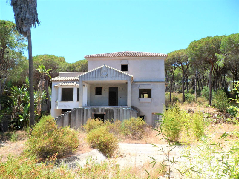 Immobilien Las Chapas 9