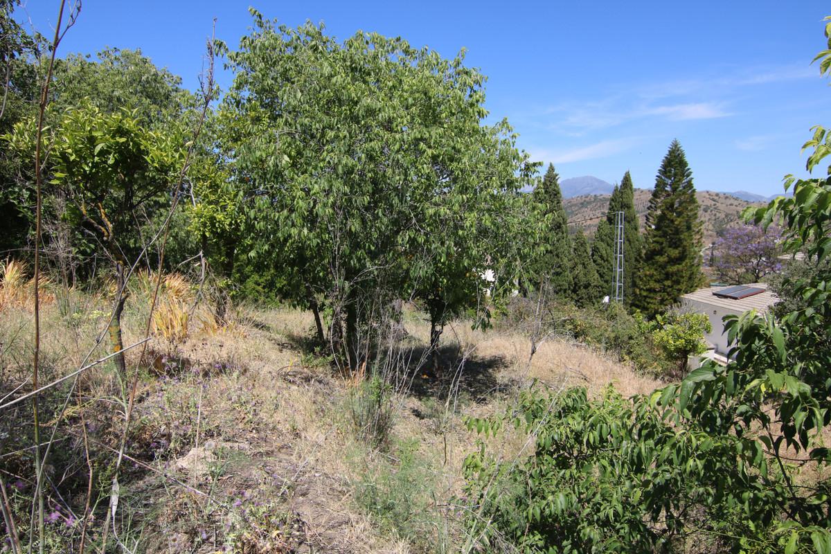 For Sale - Land - Coín - 18 - homeandhelp.com