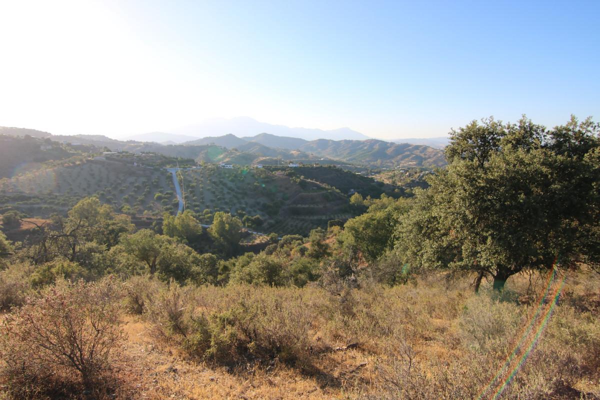 Ventas - Terreno Rustico - Coín - 3 - homeandhelp.com