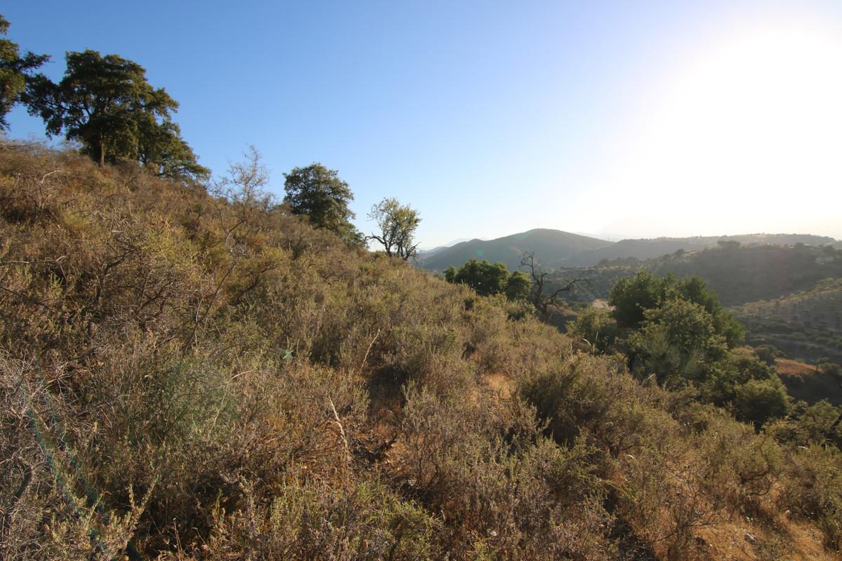 Ventas - Terreno Rustico - Coín - 7 - homeandhelp.com