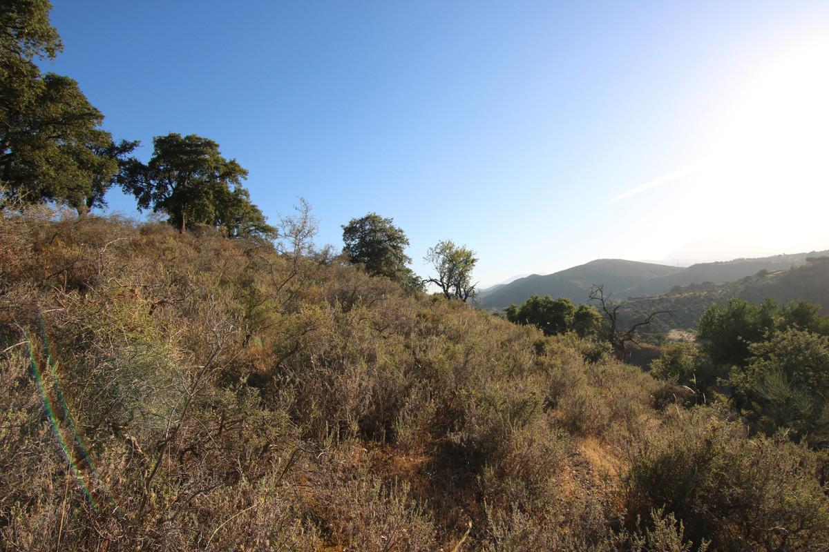 Ventas - Terreno Rustico - Coín - 9 - homeandhelp.com
