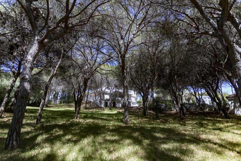 Marbella Banus Villa – Chalet a la venta en Calahonda – R3644462