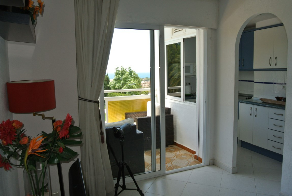 Apartment for Sale in Nueva Andalucía - R3199957