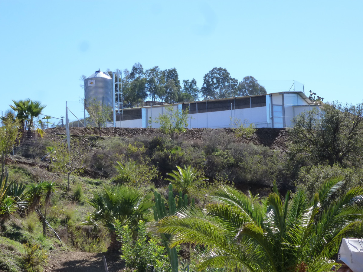 73.000 M2 IN THE COUNTRY  LIMITED WITH LA CALA DE MIJAS GOLF COURSE.  ALREADY BUILT 3  INDUSTRIAL PA, Spain
