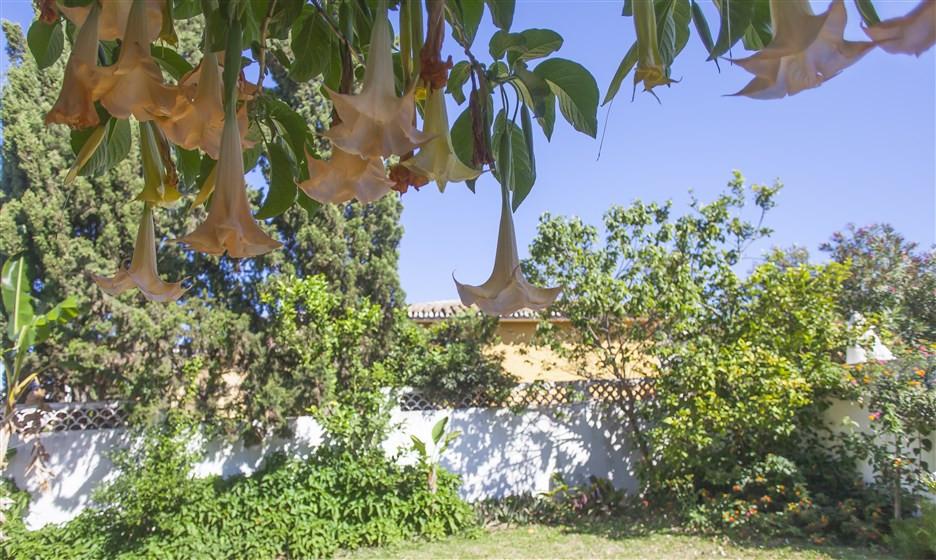 Villa for sale in Costabella - Marbella East Villa - TMRO-R2734541