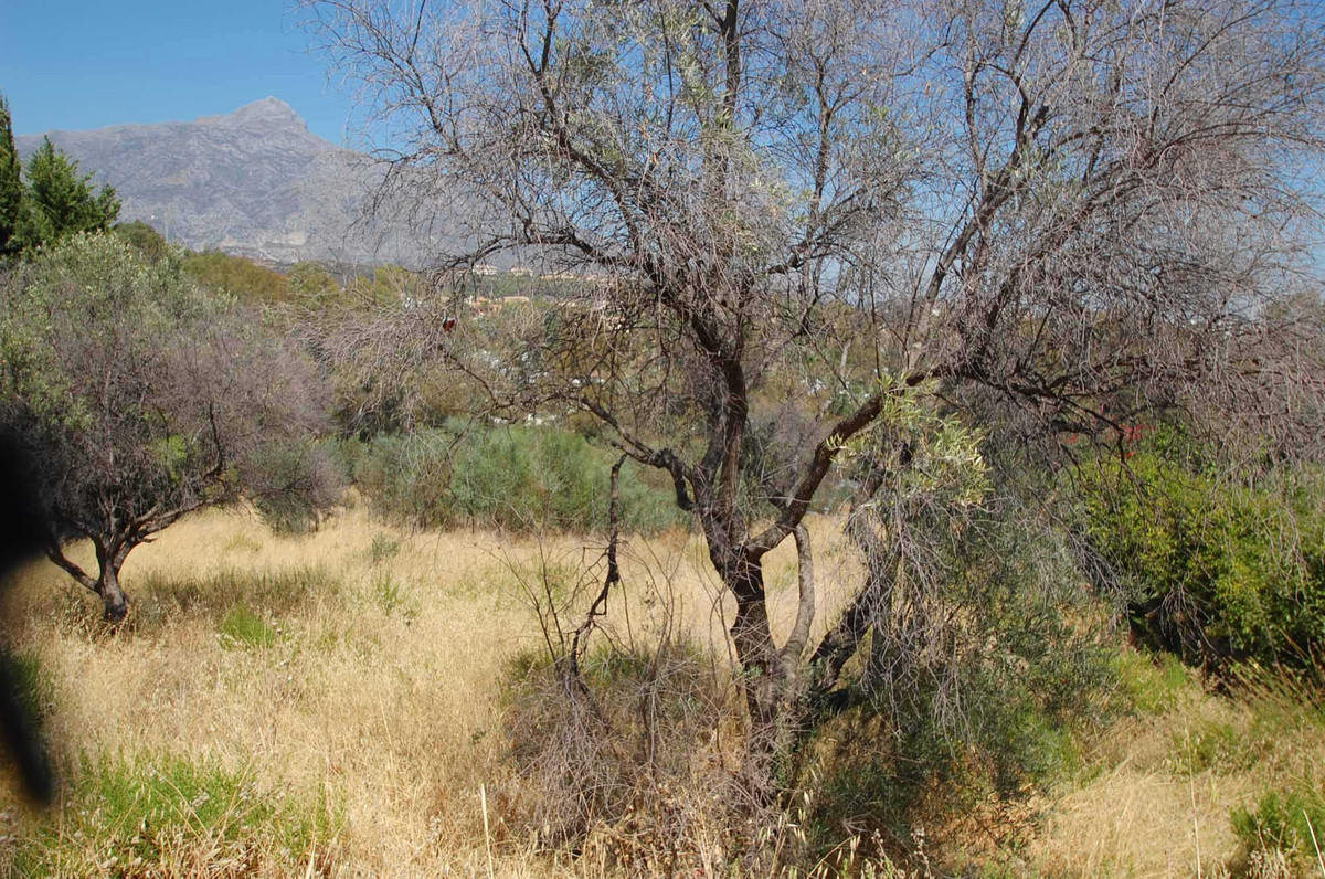 This plot is situated in a very sought after urbanization offering superb sea, golf and mountain vie, Spain