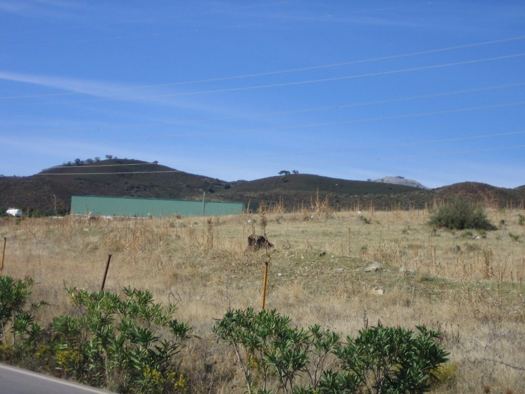 Plot in Casares R2660540 5 Thumbnail