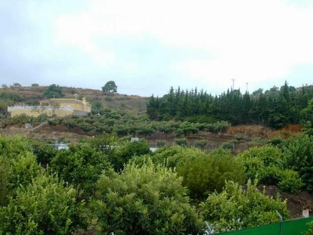 Дом - Estepona - R20265 - mibgroup.es
