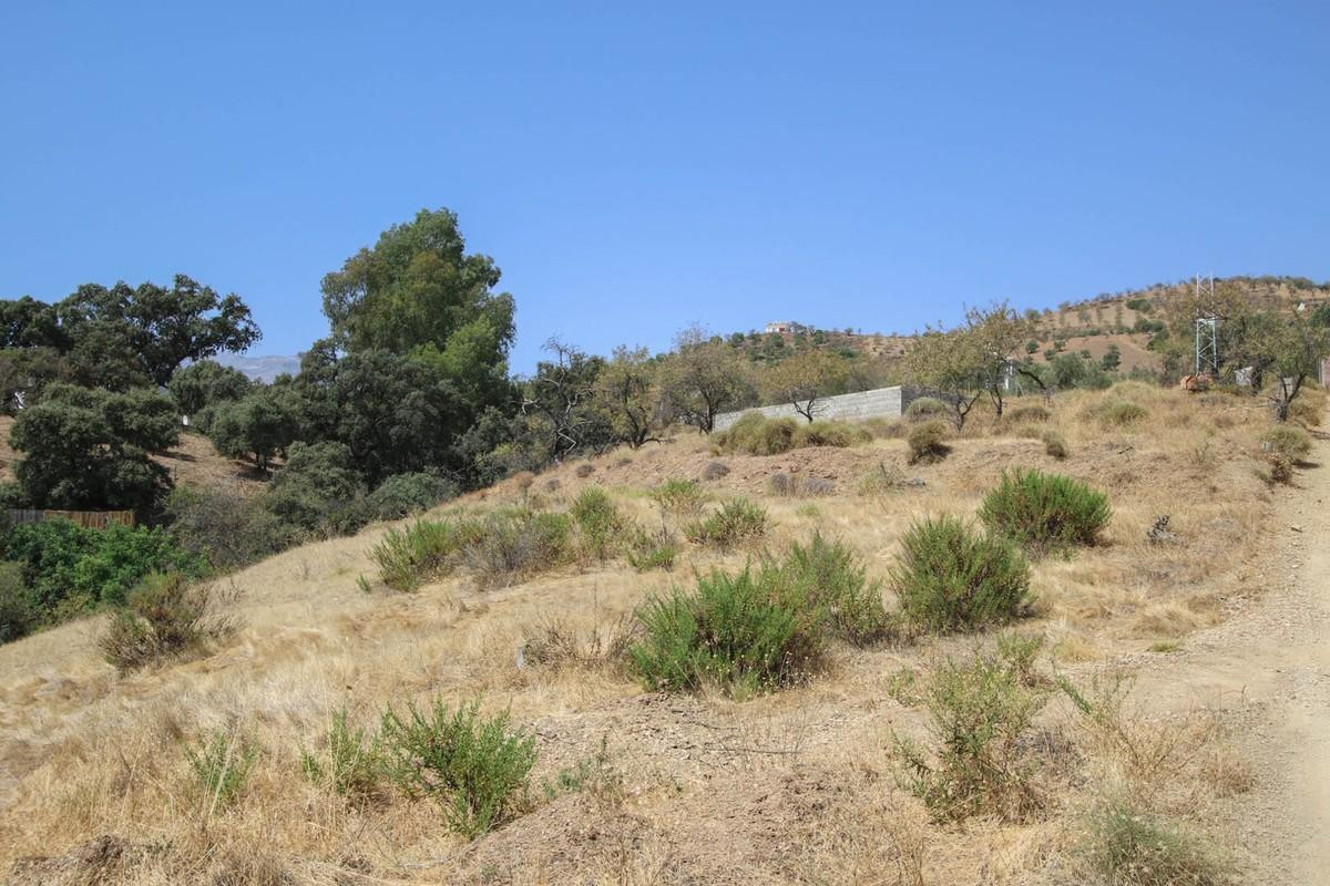 Land for sale in Tolox