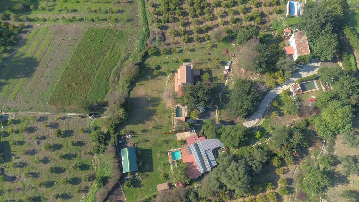 WORKING BUSINESS, Three House, THREE POOLS, One Plot  .   Fully working business for sale .   ECOLOG,Spain