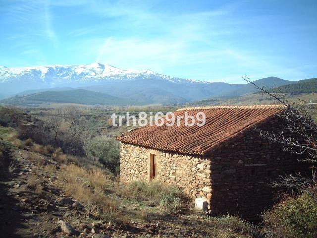Villa - Chalet - Guadix - R198785 - mibgroup.es