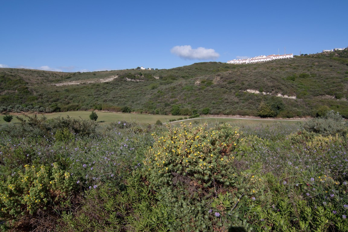 R3015548: Plot for sale in Casares