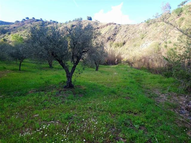 Land, Guaro, Costa del Sol. Garden/Plot 2500 m².  Setting : Country, Mountain Pueblo, Close To Fores, Spain